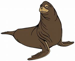 Sea Lion Drawing - ClipArt Best