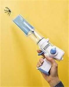 Mittel Gegen Spinnen Im Haus : mittel gegen spinnen fangen oder killen creative thinking ~ Michelbontemps.com Haus und Dekorationen