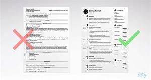 15  Infographic Resume Templates  Examples  U0026 Builder