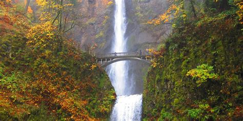 great fall hikes  oregon outdoor project