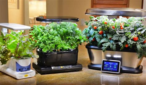 Are These Indoor Gardens Kits