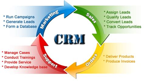 Importance Of Customer Relationship Management (crm)  Stp. Windows Installation Media Green Baby Diapers. Broward County Divorce Attorney. Free Digital Signature Software. Seattle Mental Health Services. Michigan Llc Operating Agreement. Master Business Administration Jobs. Chase Presidential Plus Mastercard. How To Build My Own Website Realtor Web Site