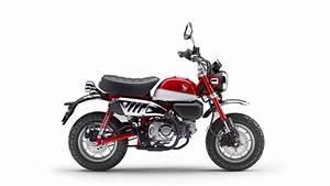 Honda Moto Marseille : moto honda monkey 125 urban moto ~ Melissatoandfro.com Idées de Décoration