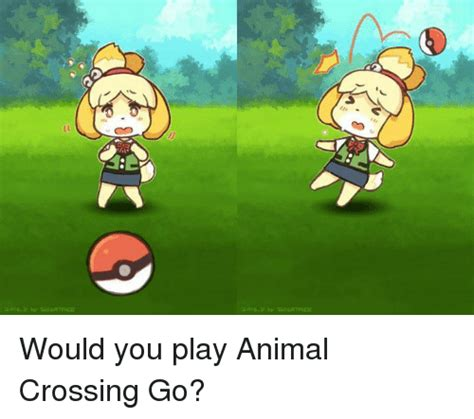 funny animal crossing memes of 2017 on sizzle animal crossing new leaf