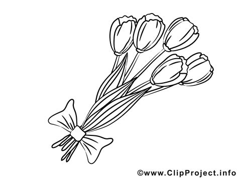 strauch mit weißen blüten die 61 besten schwarzwei 223 e blumen hintergrundbilder