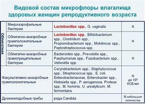 Восстановление печени после приема антибиотиков препараты