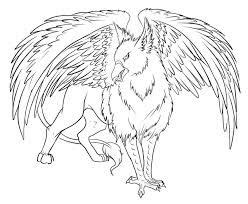 image result  phoenix fire bird drawing harry potter coloring pages harry potter colors