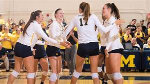 Season in Review: 2016 Michigan Volleyball - University of ...