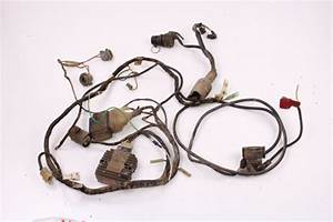 87 Kawasaki Bayou 300 Wiring Harness Electrical Wiring  Module  Electrical Cdi Box