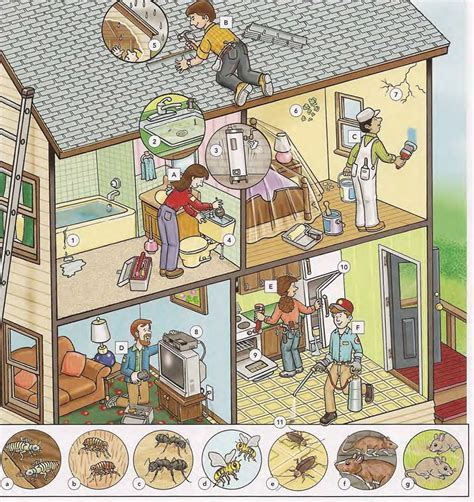 Household problems and repairs vocabulary PDF
