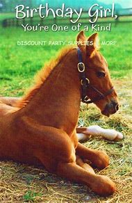 Horse Happy Birthday Greetings