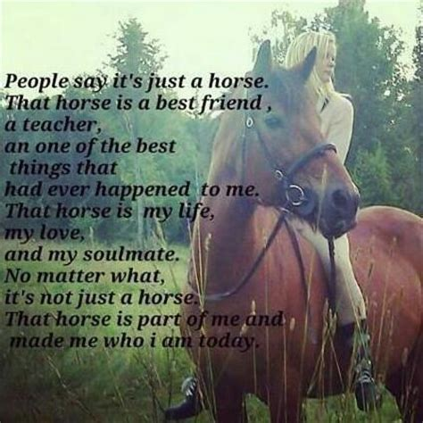 horse poems quotes friends friend much say never