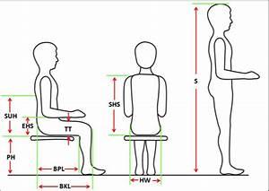 Essential Anthropometric Measures