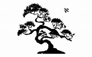 Imgs For > Bonsai Tree Line Drawing | Whiterock Gardens ...