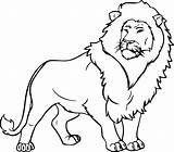 Lion Coloring Pages Sheet sketch template