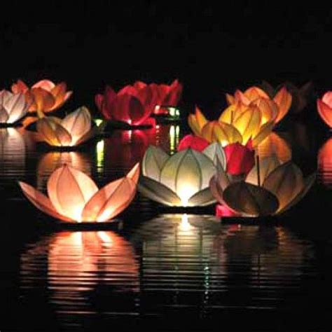 les 25 meilleures id 233 es de la cat 233 gorie lanternes flottantes sur lanternes