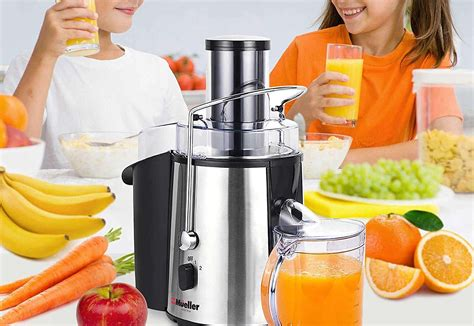 juicer juicers extractors masticating rated healthy juice vegetables fruits recipes bullet