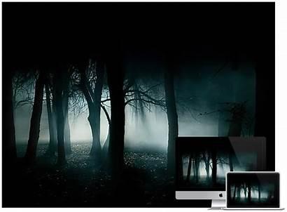 Dark Desktop Wallpapers Forest Stunning Designing Web