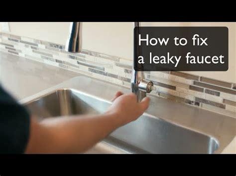 fix  leaky faucet single handle faucet  kohler