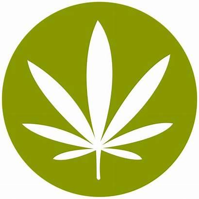 Weed Symbol Transparent Purepng Logos App