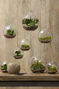 Deko Ideen Kerzen Im Glas : sukkulenten im glas im blickfang kreative deko ideen mit pflanzen ~ Bigdaddyawards.com Haus und Dekorationen