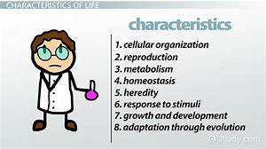 8 Characteristics of Life in Biology - Video & Lesson ...