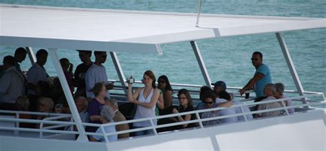 island queen cruises sightseeing cruises millionaires
