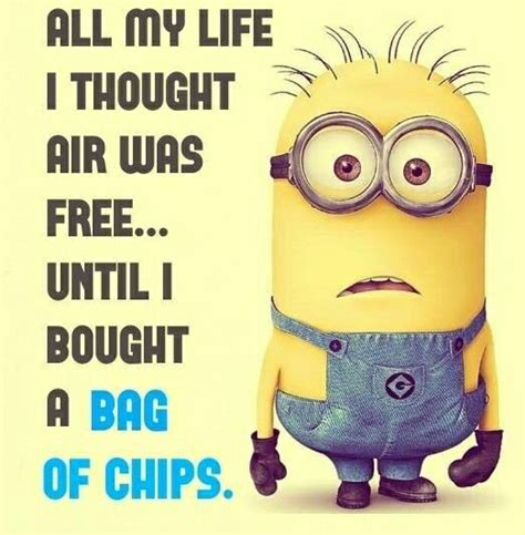 Funny Quotes Memes - best 40 minions humor quotes quotes and humor