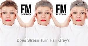 Stress Causes Hair To Turn Gray Fact Or Myth