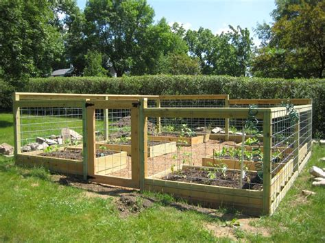 how to build a raised bed vegetable garden daily steps