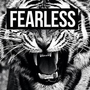 fearless tiger   Tumblr  Fearless