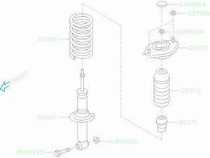 Subaru Forester Coil Spring  Rear   Coil Spring   Make