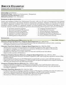sample resume law enforcement sample resume With federal law enforcement resume