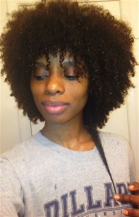 4b hair styles 17 best images about afro hair on 2258