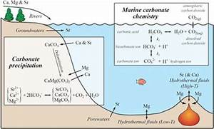 understanding changes in cenozoic carbonate chemistry ...