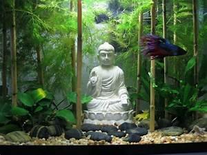 Deco Aquarium Zen : spiffy pet products betta fish tank setup ideas that make ~ Melissatoandfro.com Idées de Décoration