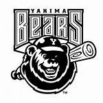 Bears Yakima Vector Svg Freebiesupply Logos Osos