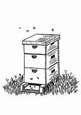 Coloring Beehive Honey Shaped Farm Bee Hive Whodunit Cartoon Crystal Milk Btlt Netart Land Spring sketch template