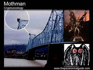 Mothman - The Paranormal Guide