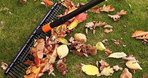 Was Ist Im Oktober Im Garten Zu Tun?