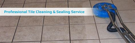 tile cleaning service carpet cleaning melbourne steam cleaning for walk on