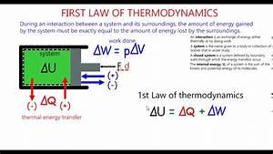Newtons 1st Law Diagram