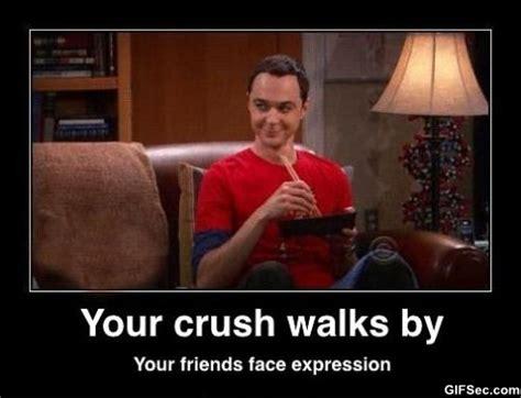 Sheldon Meme - sheldon meme jpg
