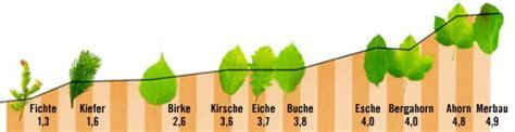 Härte Holz by Vorteile Und Eigenschaften Parkett Hornbach