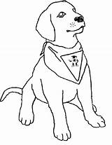 Coloring Dog Puppy Printable Boxer Realistic Labrador Puppies Drawing Lab Toddlers Colouring Line Pitbull Breeds Template Animals Retriever Getdrawings Sitting sketch template