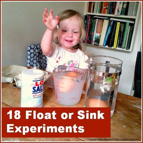 sink or float experiment 18 float or sink experiments sink and float pinterest