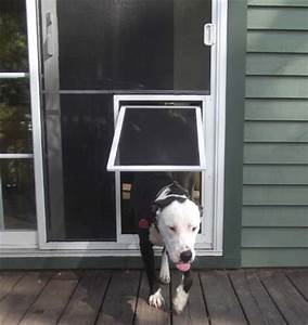 security boss pet screen door extra large With secure dog doors for large dogs