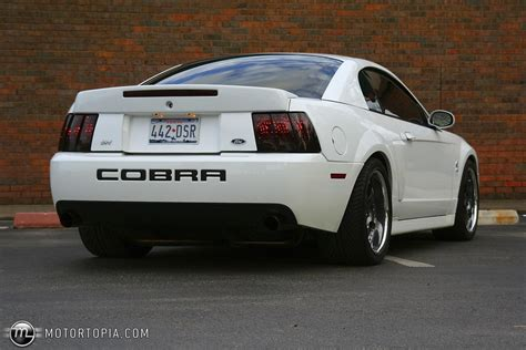 1999 Ford Mustang Svt Cobra Information And Photos