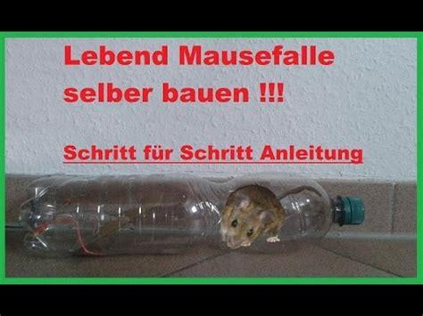 lebendfalle selber bauen diy mausefalle rattenfalle aus flasche bauen lebendfalle m 228 usefalle selber machen anleitung