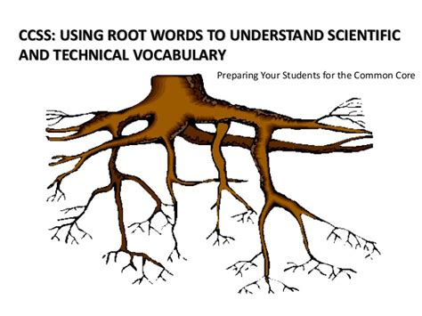 Ccss Using Root Words To Understand Scientific And Technical Vocabul…